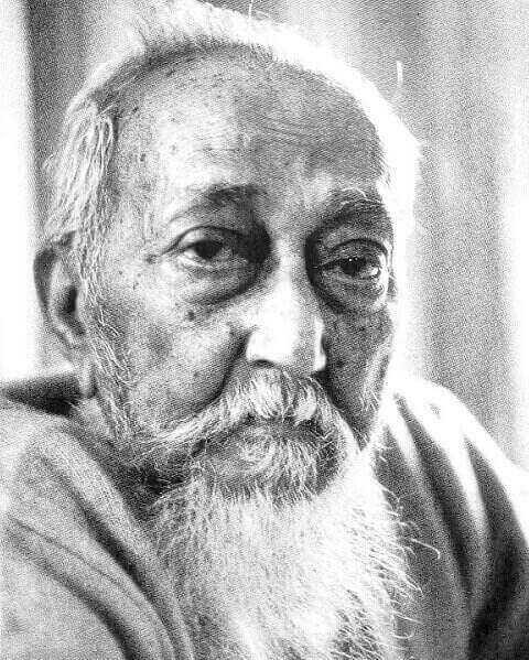 জাতীয় অধ্যাপক আব্দুর রাজ্জাক